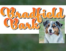 bradfield_bark.jpg